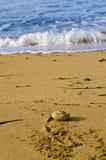 Κύματα που σπάζουν στην παραλία Στοκ φωτογραφία με δικαίωμα ελεύθερης χρήσης