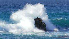 Κύματα που συντρίβουν στην πέτρινη παραλία απόθεμα βίντεο
