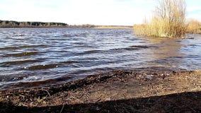 Κύματα σε έναν βαθύ ποταμό την άνοιξη απόθεμα βίντεο