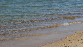 Κύματα σε μια παραλία απόθεμα βίντεο
