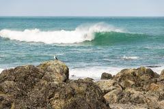 Κύματα σε Turakirae Στοκ Φωτογραφίες
