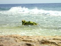 Κύματα στην άγρια παραλία Στοκ φωτογραφίες με δικαίωμα ελεύθερης χρήσης