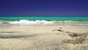 Κύματα στην παραλία του fuerteventura, ίχνη στην άμμο και τον ασυννέφιαστο μπ απόθεμα βίντεο