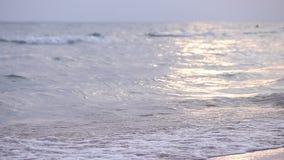 Κύματα στη θάλασσα Κύματα θάλασσας Μικρή παραλία άμμου κυμάτων Το βράδυ στην παραλία Μικρά κύματα θάλασσας και αμμώδης παραλία φιλμ μικρού μήκους