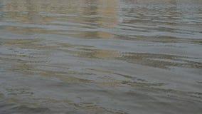 Κύματα στο ύδωρ απόθεμα βίντεο