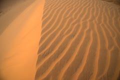 Κύματα του αμμόλοφου άμμου Στοκ Εικόνες