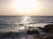 κύματα Στοκ Εικόνα