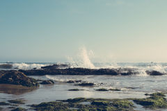 Κύματα Cresting στοκ εικόνες με δικαίωμα ελεύθερης χρήσης