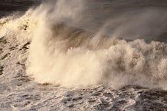 Κύμα Α θύελλας Στοκ Φωτογραφία