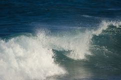 Κύμα δίπλα στην ακτή Στοκ Φωτογραφίες