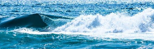 κύμα θαλασσοταραχών συντριβών Στοκ Εικόνα