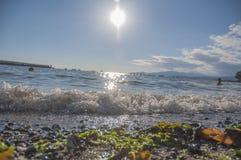 Κύμα θερινού απογεύματος Στοκ Εικόνες