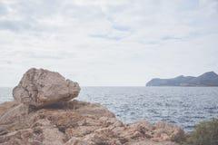 Κύμα στην ακτή Στοκ Εικόνες