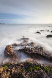 Κύμα του ωκεανού Στοκ Εικόνες