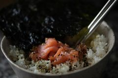 Κύπελλο ρυζιού με το σολομό και το φύκι στοκ φωτογραφία