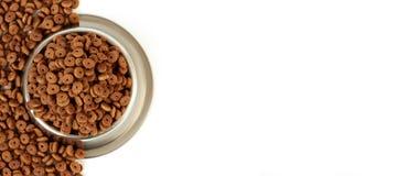 Κύπελλο γατών με την τροφή κατοικίδιων ζώων με το μισό άσπρο υπόβαθρο και τα διεσπαρμένα ξηρά τρόφιμα Στοκ Εικόνες