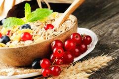 Κύπελλο με τα δημητριακά και τα φρέσκα μούρα στοκ εικόνα