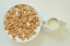 Κύπελλο με τα δημητριακά προγευμάτων που ενυδατώνονται στο γάλα Στοκ Εικόνα
