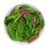 Κύπελλο με τη φρέσκια πράσινη σαλάτα που απομονώνεται στο άσπρο υπόβαθρο (spinac Στοκ Εικόνες