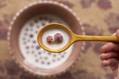 Κύπελλο με το γάλα και τις άγριες φράουλες Στοκ φωτογραφία με δικαίωμα ελεύθερης χρήσης