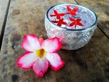 Κύπελλο με το νερό και τα λουλούδια Στοκ Φωτογραφία