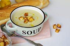 Κύπελλο της φυτικής σούπας Πουρές σούπας κουνουπιδιών με croutons Στοκ Εικόνες