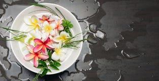 Κύπελλο του νερού με Frangipani ή το plumeria Στοκ εικόνα με δικαίωμα ελεύθερης χρήσης