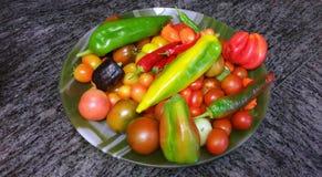 Κύπελλο του φρέσκου επιλεγμένου κήπου veggies Στοκ Φωτογραφία