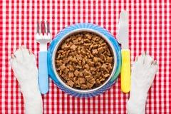 Κύπελλο τροφίμων σκυλιών στοκ φωτογραφίες