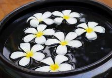 Κύπελλο Aromatherapy Στοκ Εικόνες