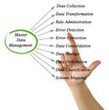 Κύρια διαχείριση δεδομένων στοκ εικόνες