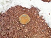 Κύρια κάλυψη νερού δίπλα στο λειώνοντας χιόνι Μ στοκ φωτογραφία με δικαίωμα ελεύθερης χρήσης