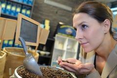 Κύριος καφές πορτρέτου που μυρίζει τα αρωματικά φασόλια καφέ Στοκ Φωτογραφίες