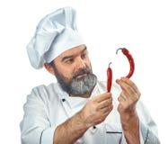Κύριος μάγειρας που κρατά δύο πιπέρια τσίλι Στοκ φωτογραφίες με δικαίωμα ελεύθερης χρήσης