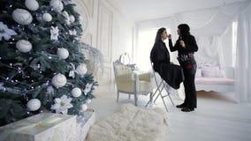 Κύριος Visage στο στούντιο κοντά στο χριστουγεννιάτικο δέντρο απόθεμα βίντεο