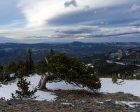Κύριο βουνό, Κολοράντο Στοκ φωτογραφία με δικαίωμα ελεύθερης χρήσης