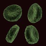 κύτταρα αίματος Στοκ φωτογραφίες με δικαίωμα ελεύθερης χρήσης
