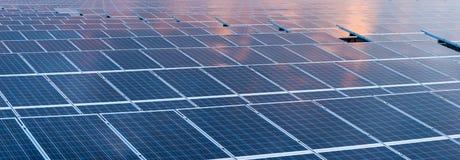κύτταρο ηλιακό Στοκ εικόνα με δικαίωμα ελεύθερης χρήσης