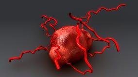 Κύτταρο καρκίνου του μαστού ελεύθερη απεικόνιση δικαιώματος