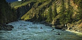 κύψελλος ποταμών βουνών Στοκ φωτογραφία με δικαίωμα ελεύθερης χρήσης