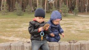 Κώνοι κοριτσιών επιλογής πεύκων και τοποθέτηση τους στο φράκτη όπου ένα αγόρι κάθεται ποιους κουμπιά ωθήσεων στο smartphone απόθεμα βίντεο