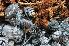 Κώνοι πεύκων και ξηρά λουλούδια Στοκ εικόνα με δικαίωμα ελεύθερης χρήσης