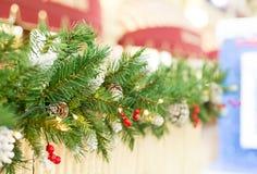 Κώνος κλάδων χριστουγεννιάτικων δέντρων συνόρων με τη φωτεινή μούρων ελαιόπρινου διακόσμηση Χριστουγέννων οδών εορταστική με perp Στοκ φωτογραφία με δικαίωμα ελεύθερης χρήσης