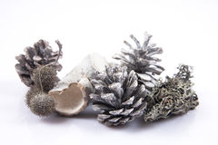 Κώνος πεύκων που απομονώνεται στο άσπρο υπόβαθρο με τις σφαίρες Χριστουγέννων Στοκ εικόνες με δικαίωμα ελεύθερης χρήσης