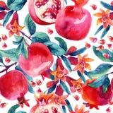 Κλάδοι άνθισης ροδιών Watercolor και άνευ ραφής σχέδιο φρούτων Στοκ Εικόνα