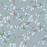 Κλάδοι λουλουδιών σε γκρίζο Στοκ φωτογραφία με δικαίωμα ελεύθερης χρήσης