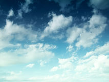 κλάδοι πράσινοι κανένας riverbank καλοκαίρι ουρανού Στοκ εικόνα με δικαίωμα ελεύθερης χρήσης