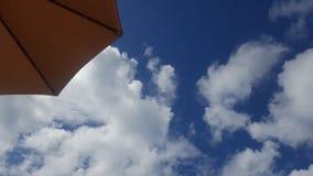 κλάδοι πράσινοι κανένας riverbank καλοκαίρι ουρανού Στοκ Φωτογραφίες
