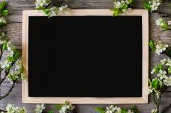 Κλάδοι του άσπρου ανθίζοντας δαμάσκηνου με το μαύρο διάστημα αντιγράφων Στοκ εικόνα με δικαίωμα ελεύθερης χρήσης