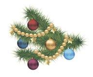 Κλάδος δέντρων πεύκων Χριστουγέννων Στοκ Φωτογραφίες